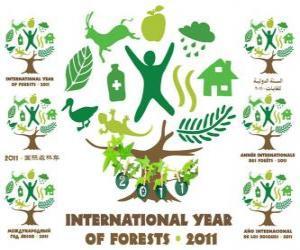 puzzel 2011 Internationaal Jaar van de Bossen