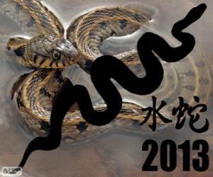 puzzel 2013, het jaar van de Water Slang. Volgens de Chinese kalender, uit de 10 februari 2013 aan 30 januari 2014