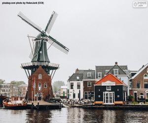 puzzel Adriaan Mill, Haarlem, Nederland