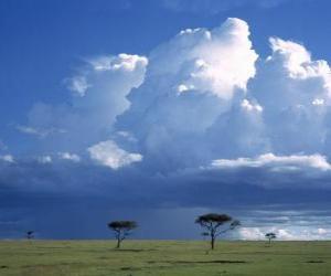 puzzel Afrikaanse savanne