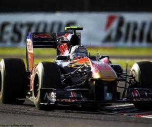 puzzel Alguersuari - Toro Rosso - Suzuka 2010