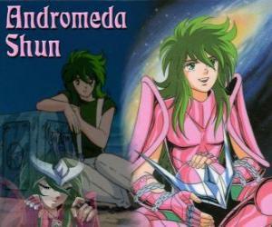 puzzel Andromeda Shun, de Heilige brons van Andromeda het sterrenbeeld