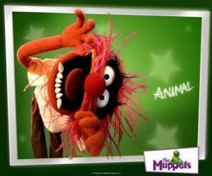 puzzel Animal, de gekke drummer van de band uit de Muppet Show is een oermens