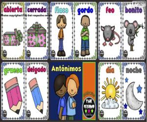 puzzel Antoniemen