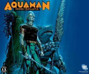 puzzel Aquaman was een van de stichtende leden van het team Justice League of America of JLA