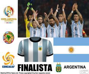 puzzel ARG finalist, Copa America 2016