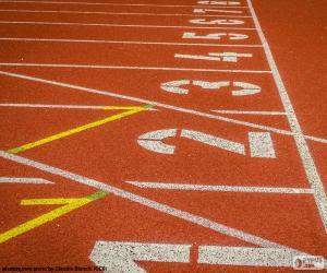 puzzel Baan Atletiek, 100 m