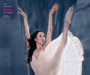 puzzel Ballet - Dancer in actie