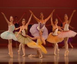puzzel Ballet Toon