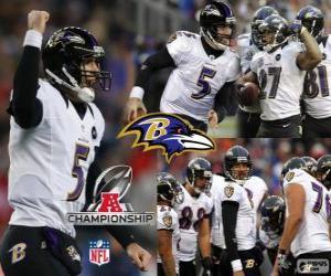 puzzel Baltimore Ravens de 2012 AFC kampioen