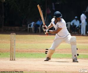 puzzel Batsman cricket