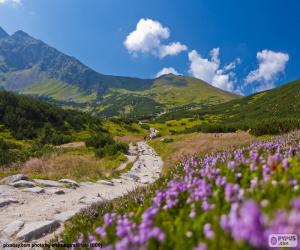 puzzel Berglandschap