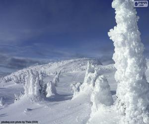 puzzel Bevroren landschap