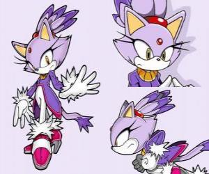 puzzel Blaze the Cat, een prinses en een van de vrienden van Sonic