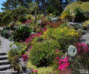 puzzel Botanische tuin