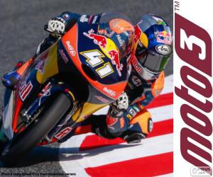 puzzel Brad Binder, Moto3 2016