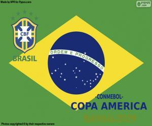 puzzel Brazilië, kampioen van Copa America 2019