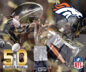 puzzel Broncos, Super Bowl 2016 Champions