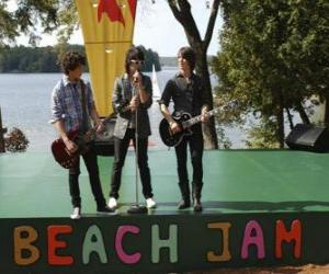 puzzel Brothers Shane (Joe Jonas), Nate (Nick Jonas) en Jason Gray (Kevin Jonas), zingen in het Camp Rock Beach Jam