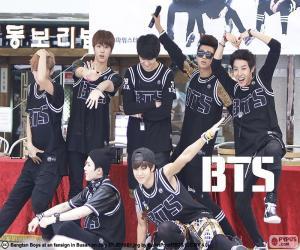 puzzel BTS, Bangtan Boys