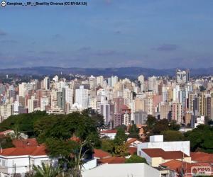 puzzel Campinas, Brazilië