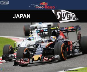 puzzel Carlos Sainz Jr., Grand Prix van Japan 2016