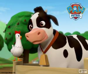 puzzel Chickaletta en Bettina, PAW Patrol