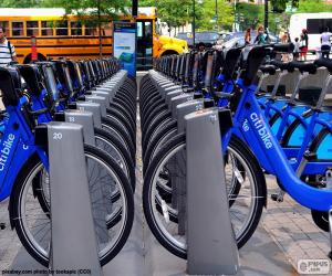 puzzel Citi Bike, New York