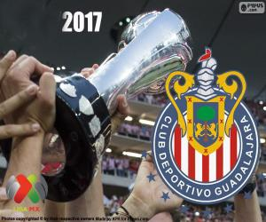 puzzel Club Deportivo Guadalajara, Clausura 2017 kampioen