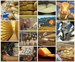 puzzel Collage van kaas