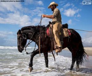 puzzel Cowboy door de zee