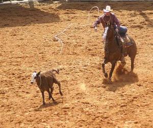 puzzel Cowboy op een paard en het vangen van een hoofd van vee met de lasso