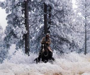 puzzel Cowboy op een paard