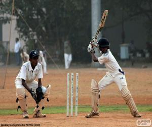puzzel Cricket spelers