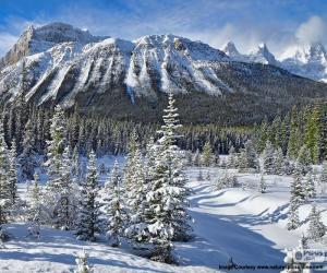 puzzel Crowfoot Mountain, Canada