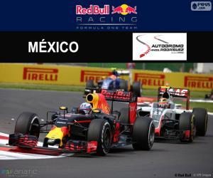 puzzel Daniel Ricciardo, de Mexicaanse Grand Prix 2016