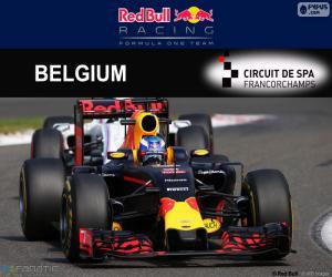 puzzel Daniel Ricciardo, GP België 2016