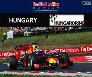 puzzel Daniel Ricciardo, GP Hongarije 2016