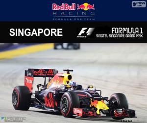 puzzel Daniel Ricciardo, Grand Prix van Singapore 2016