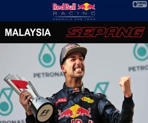 puzzel Daniel Ricciardo, Grand Prix van Maleisië 2016