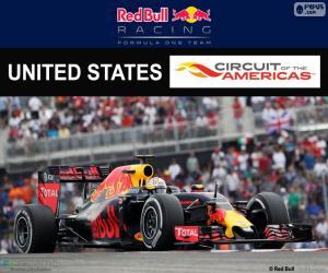 puzzel Daniel Ricciardo,Grand Prix Verenigde Staten 2016