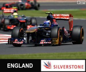 puzzel Daniel Ricciardo - Toro Rosso - Silverstone, 2013
