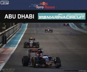 puzzel Daniil Kvyat, Grand Prix van Abu Dhabi 2016