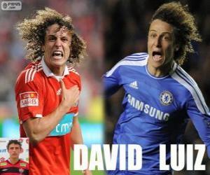 puzzel David Luiz
