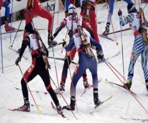 puzzel De biatlon in een wintersport van het combineren van cross-country skiën met een schietwedstrijd.