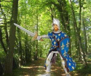 puzzel De dappere en charmante prins met zijn schild en zwaard
