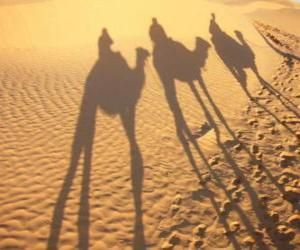 puzzel De drie Wijzen rijden kamelen op weg naar Bethlehem