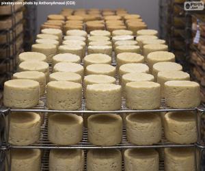 puzzel De genezing van kaas