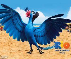 puzzel De Jewel is een mooie vrouwelijke ara in de film Rio