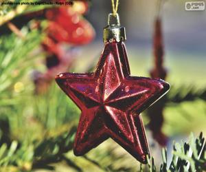 puzzel De ster van Kerstmis